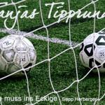 WM-Tippspiel – die Details