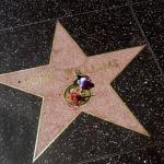 Der Stern von Robin Williams auf dem Walk of Fame. Mit Blumen wird an seinen Tod erinnert. © Tanja Banner
