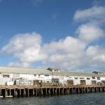 Monterey. © Tanja Banner